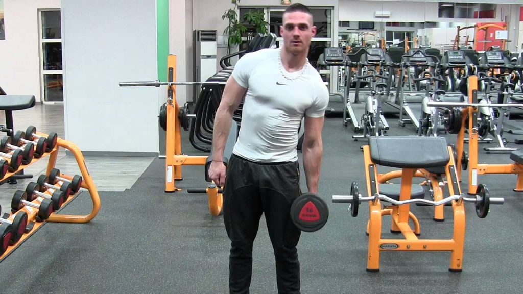 abdo exercice flexion buste