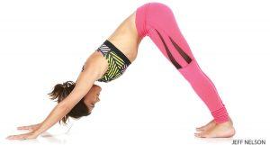 etirement dos chien yoga